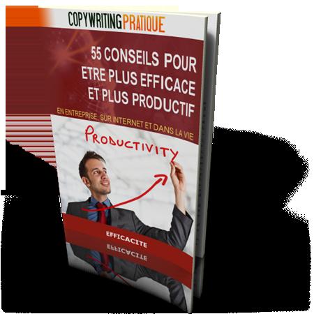 livre 55 conseils pour être plus efficace et plus productif