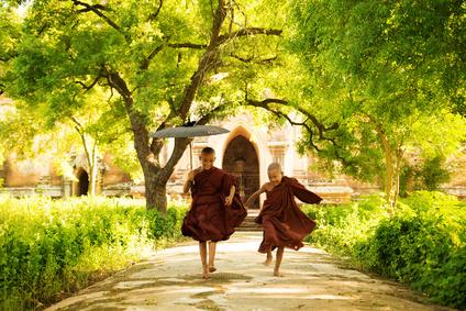 moines bouddhistes zen
